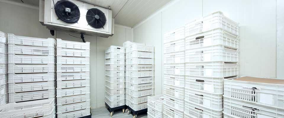 Bellarine & Westcoast Coolrooms